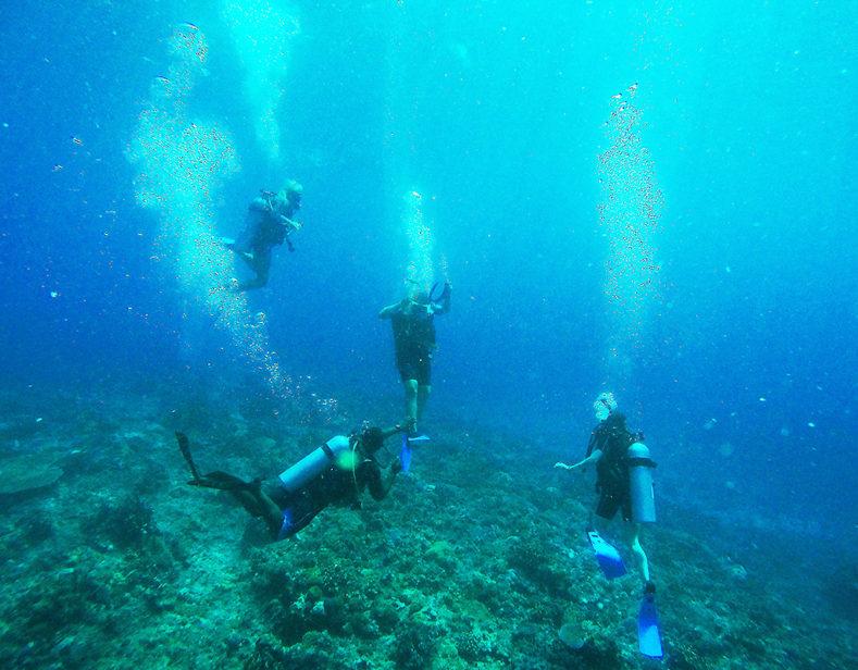 Fiji's Underwater World. Part I.